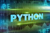 Python concept — Stock Photo