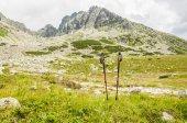 Trekking poles on background of mountains — Stock Photo