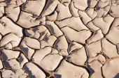 Scorched Earth - pattern — Stock Photo