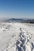 Trodden path in the snow — Stock Photo