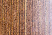 Brown texture — Stock Photo