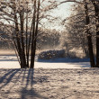 Winter park in sunny day — Stock Photo #58507987