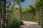 Alley in the trellis in gardens of Versailles palace — Stock Photo
