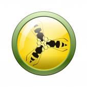 Botón y el icono de la abeja — Vector de stock