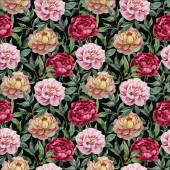 Beautiful vector watercolor pattern with peonies on black fon3 — ストックベクタ