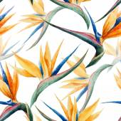 Pattern, watercolor, flower — Stock Photo