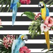 Tropical  pattern with birds — Stock Photo #63192859