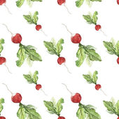 Watercolor background with  radish — Stock Photo