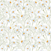 Watercolor chamomile background — Stock Photo