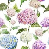 Hydrangea Watercolor flowers pattern — Stock Photo