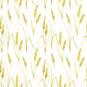 Watercolor pattern with wheat — Stock Vector