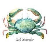 Watercolor ocean crab — Fotografia Stock
