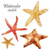 Watercolor starfish set — Foto de Stock