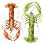 Watercolor ocean lobster pattern — Stock Photo