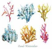 Watercolor corals set and ocean sponge — Stock Photo