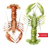 Watercolor ocean lobster pattern — Stock Vector