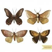 Watercolor butterflies pattern — Stock Vector
