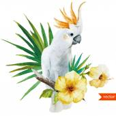 White parrot, hibiscus, tropical, palm trees, flowers, pattern, wallpaper — Stock Vector