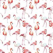 Flamingo pattern — Stock Vector
