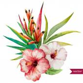 Nice tropical flowers — Vetor de Stock