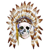 Native skull — Stock Vector