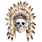 Crâne native — Vecteur