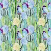 Cactus seamless patterns — Stock Vector