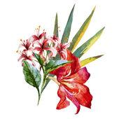 Kwiaty w akwarela — Wektor stockowy