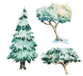 Watercolor trees — Stock Vector
