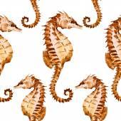 Watercolor seahorse pattern — Stock Vector