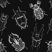 Nice beetles vector pattern — Stock Vector