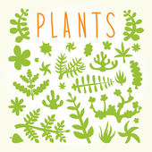 Hand drawn doodle plants — Stock Vector