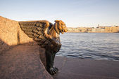 Statue of a griffin on the University Embankment on the Neva bac — Stock Photo