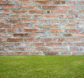 Brick wall and green lawn — Stockfoto