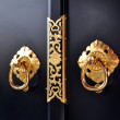 Exotic ornamental brass door — Stock Photo #65124083