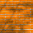 Tree Shadow on Orange Color Grunge brick wall background — Stock Photo #65748493