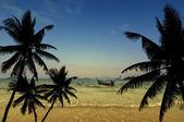 Coconut palms silhouette on sand beach — Stock Photo