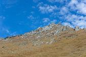 Landscape mountain — Stock Photo