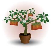 Money plant, flower in pot — Stock Vector