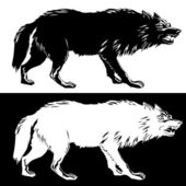 Wolf silhouette black and white. Vector illustration — Stock Vector
