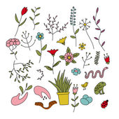 Set of spring plants, flowers and animals — Stock Vector