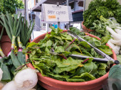 Baby chard displayed in bowl with tongs, Corvallis Farmers Market. — Stock Photo