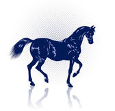Navy-blue horse — Stock Vector