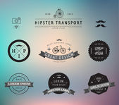 Set of hipster vintage labels — Stock Vector