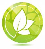 Green leaves icon — Stock Vector