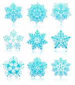 Snowflakes with reflections — Stock Vector