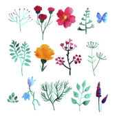 Vector set of watercolor plants on white background — Stock Vector