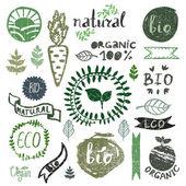 Watercolor logotypes set — Stock Vector