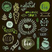 Paint logotypes set — Stock Vector