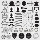 Set of vintage design hipster icons — Stock Vector